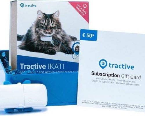 tractive gps tracker kat met voucher halsband klein katten trackers
