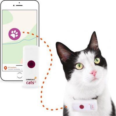 weenect cats gps tracker voor katten klein halsband